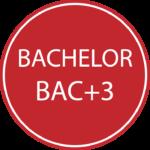 BACHELOR EMPSI